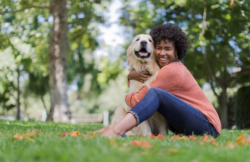 Pet Insurance Financial Protection For Dogs Cats Carecredit